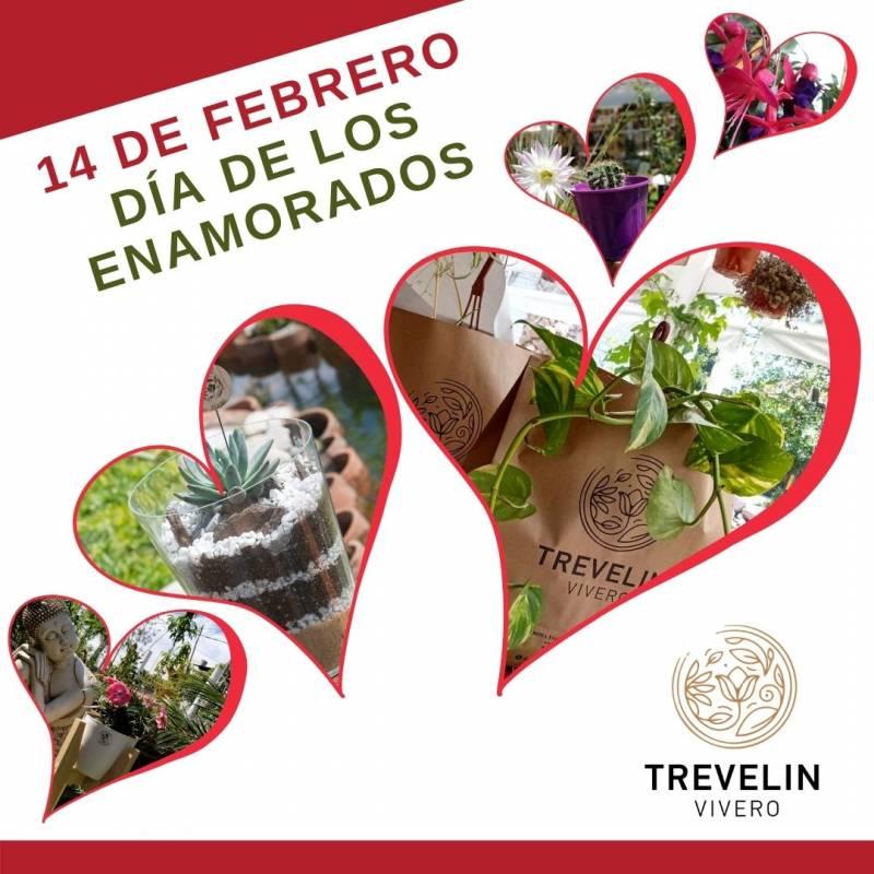 14 de Febrero - Día de los enamorados