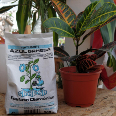 Fosfato Diamónico - Fertilizante