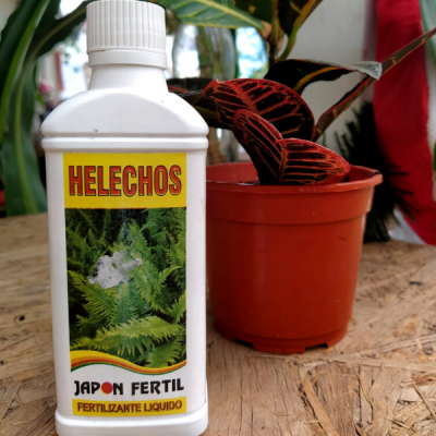 Fertilizante Para Helecho - Japón Fértil (líquido)