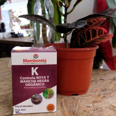 Fungicida Orgánico Para Roya Y Mancha Negra - Mamboreta