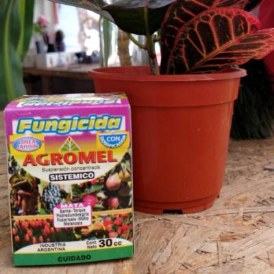 Fungicida Sistémico - Agromel