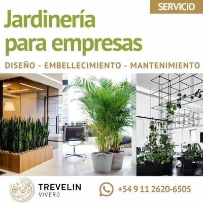 Jardinería Para Empresas